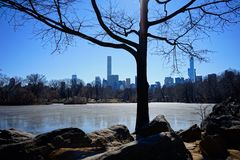 Central Park Images stock