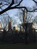 Central Park Fotografía de archivo libre de regalías