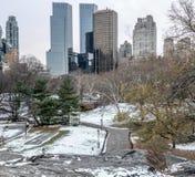Central Park após a neve Fotos de Stock