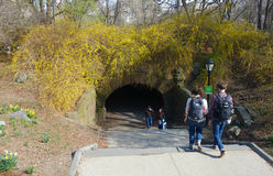 Central Park Arch. The Trefoil Arch, in Central Park, New York City Royalty Free Stock Photo