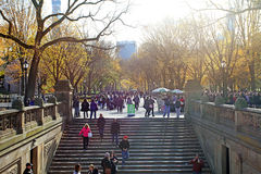 Central Park au jour ensoleillé, New York City Photo stock