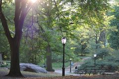 Central Park. An autumn afternoon at Central Park in New York City Stock Photos