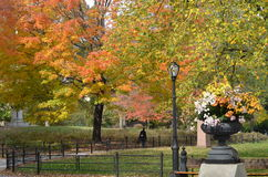 Central Park in the autumn. Manhattan, New York Stock Photography