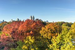Central Park, Autumn, New York Stock Image