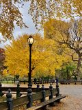 Central Park in the autumn, New York City stock photography