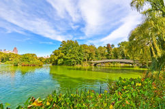 Central Park in autumn in New York City Royalty Free Stock Images