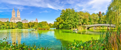 Central Park in autumn in New York City Royalty Free Stock Photo