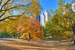 Central Park in Autumn, New York Stock Image