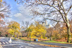 Central Park in autumn,New York Royalty Free Stock Photo
