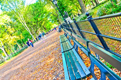 Central Park in autumn in New York Stock Photography