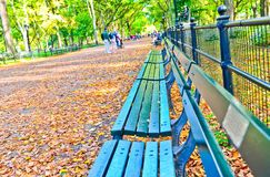 Central Park in autumn in New York Royalty Free Stock Images