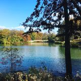 Central park autumn nyc Stock Image