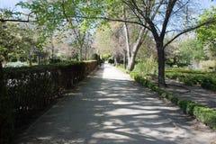 Central Park av Madrid, Spanien Royaltyfria Foton