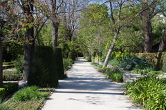 Central Park av Madrid, Spanien Royaltyfri Fotografi