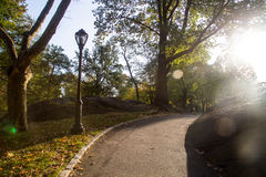 Central Park av New York City Royaltyfria Bilder