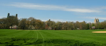 Central Park baseball field Stock Images