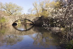 Central park. Beautiful bridge in central park on a sunny day Royalty Free Stock Photos