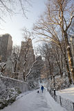 Central Park bij de winter Royalty-vrije Stock Fotografie