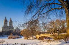 Central park bow bridge Royalty Free Stock Images