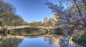 Central Park bow bridge spring Stock Image