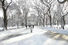 Central Park branco Imagens de Stock Royalty Free