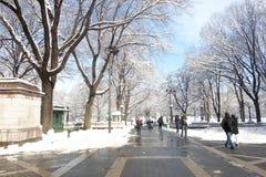 Central Park branco Fotos de Stock Royalty Free