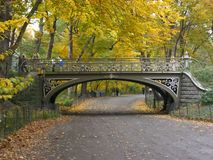 Free Central Park Bridge & Path Stock Photography - 6388952