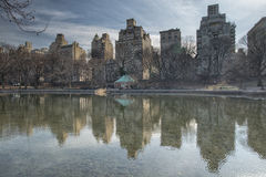 Central park, buildings reflection in a pond Stock Photos