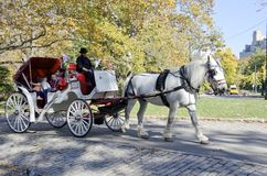 Central Park Carriage Ride Stock Image