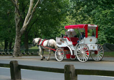Central Park Carriage Ride New York USA. Horse drawn carriage in Central Park, Manhattan, New York City royalty free stock photo