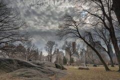 Central Park, chemins, ormes, début février Images libres de droits