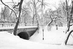 Central Park da ponte e da neve Fotos de Stock