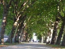 Central Park dans Ham London est Photo stock