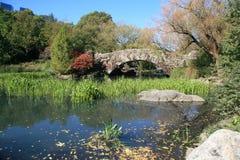 Central Park dans l'automne Photographie stock libre de droits