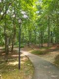 Central Park dans roi, la Caroline du Nord photographie stock