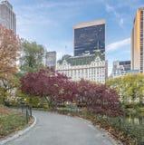 Central Park, de de Stadsherfst van New York Stock Foto's