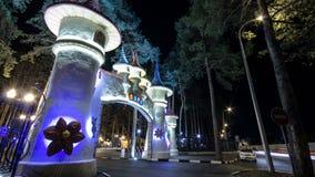 Central Park de Gorki de la cultura y del ocio en el timelapse de Kharkov, Ucrania almacen de video