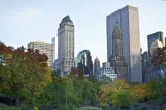 Central Park de negligência Imagem de Stock