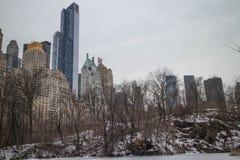 Central Park 5 de New York City Imagens de Stock