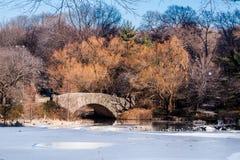 Central Park de piedra New York City del puente Fotografía de archivo
