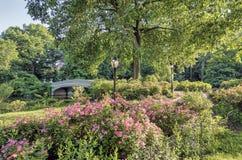 Central Park de pont d'arc Photographie stock