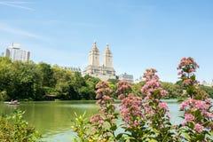 Central Park in de Stad NYC van New York Stock Fotografie