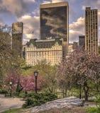 Central Park, de Stad van New York stock foto