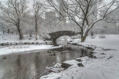 Central Park, de Stad van New York Royalty-vrije Stock Foto