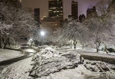 Central Park, de Stad van New York Royalty-vrije Stock Afbeeldingen
