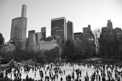Central Park in de winter, NYC, de V.S. royalty-vrije stock afbeelding