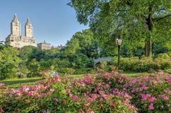 Central Park del ponte dell'arco Fotografie Stock