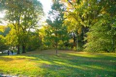 Central Park di New York Immagini Stock