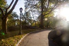 Central Park di New York Immagini Stock Libere da Diritti