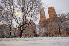 Central Park dopo la neve Strom Linus Fotografie Stock Libere da Diritti